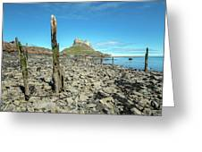 Holy Island Of Lindisfarne - England Greeting Card