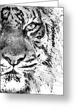 Black And White Half Faced Tiger Greeting Card