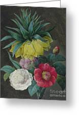 Four Peonies And A Crown Imperial  Greeting Card