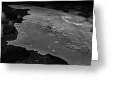 Ice Layer On The Seafloor Greeting Card