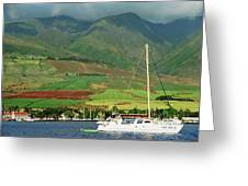 Maui Sunset Sail Greeting Card
