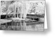 Reflections Of The Landscape Greeting Card