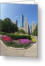 Summer Flowers In Bloom, Millennium Park, Chicago City Center, I Greeting Card
