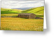 Yorkshire Dales Landscape Greeting Card