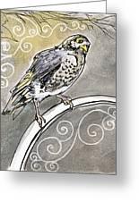 2018 Septembird 16 Myna Bird Greeting Card