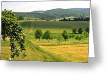 Photograph Of A Field In Germany Greeting Card