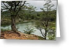 Picturesque Laguna Verde, Tierra Del Fuego National Park, Ushuaia, Argentina Greeting Card
