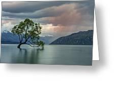 Wanaka - New Zealand Greeting Card