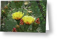 Yellow Prickly Pear Flowers Greeting Card