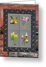 Orchids Antique Quadro Weathered Plank Rusty Metal Greeting Card