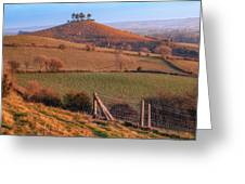 Colmers Hill - England Greeting Card