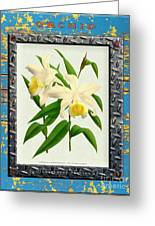 Orchid Framed On Weathered Plank And Rusty Metal Greeting Card