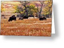 A Bison Herd In Custer State Park South Dakota Greeting Card by Gerlinde Keating - Galleria GK Keating Associates Inc