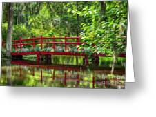 A Bridge Over The Gators. Greeting Card