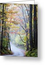 A Canopy Of Autumn Leaves Greeting Card