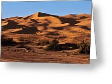 A Caravan In The Desert Greeting Card