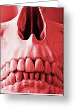 A Close Up Of A Human Skull In Red Greeting Card