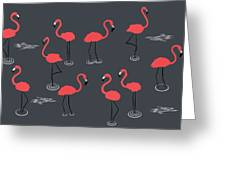 A Flamboyance Of Flamingos  Greeting Card