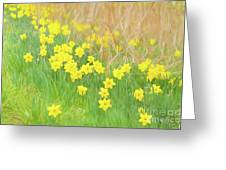 A Host Of Daffodils Greeting Card