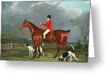 A Huntsman And Hounds, 1824  Greeting Card