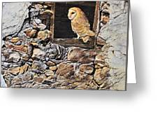 A New Home Barn Owl Greeting Card by Alan M Hunt