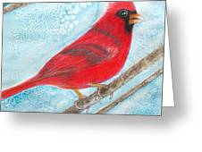 A Red Bird  Greeting Card