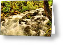 A River Turns Greeting Card