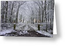 A Snowy Scene Greeting Card