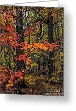 A Time In The Woods Greeting Card