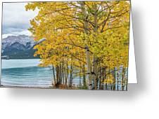 Abraham Lake Greeting Card