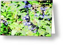 Abstract Summer Garden Greeting Card