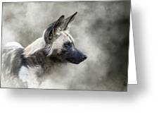 African Wild Dog In The Dust Greeting Card
