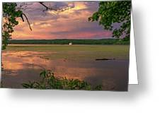 After A June Thunderstorm II Greeting Card