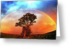 After The Storm, California Foothills                        Greeting Card