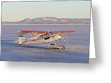 Airplane In The Harbour Greeting Card