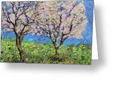 Almonds In Full Bloom Greeting Card