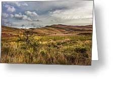 Along The Scottish Highlands Greeting Card