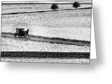 Amish Country Lancaster Pennsylvania Bw Greeting Card