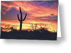 An Arizona Sunset Greeting Card by Chance Kafka