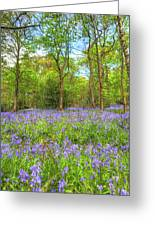 An English Bluebell Wood Greeting Card