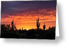 An Orange Glow Fills The Desert  Greeting Card