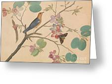 An Orange Headed Ground Thrush And A Moth On A Purple Ebony Orchid Branch, 1778 Greeting Card