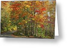 Appalachian Backroads Greeting Card