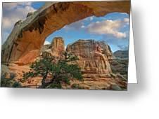 Arch, Hickman Bridge, Capitol Reef Greeting Card