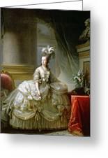 Archduchess Marie Antoinette  Greeting Card
