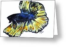 Art Doodle No.34 Betta Fish Greeting Card by Clyde J Kell