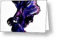 Art Doodle No.35 Betta Fish Greeting Card by Clyde J Kell