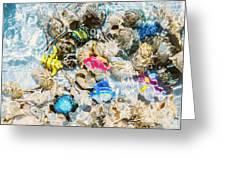 Artificial Aquarium  Greeting Card