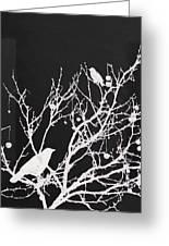 Raven - White Over Black Greeting Card