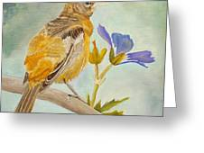 Pensive Baltimore Oriole Greeting Card by Angeles M Pomata